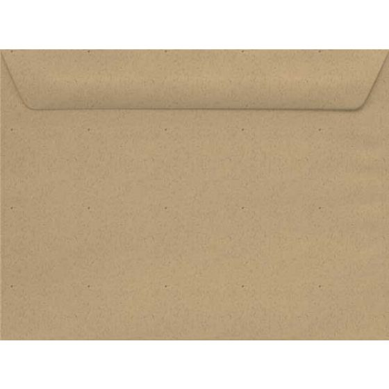 Environment DESERT STORM (24W/Smooth) - 10X13 Envelopes (13 Booklet) - 1000 PK [DFS-48]