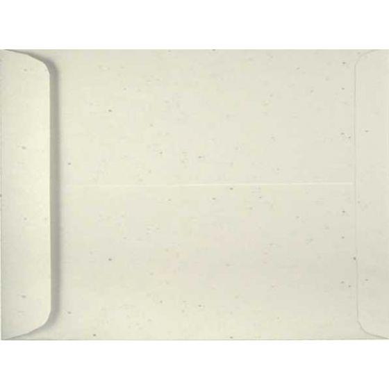 Environment TORTILLA (80T/Smooth) - 9X12 Envelopes (10.5 Catalog) - 1000 PK [DFS-48]
