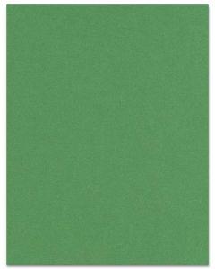 [Clearance] Curious Metallic - BOTANIC Paper - 80lb Text - 8.5 x 11 - 50 PK