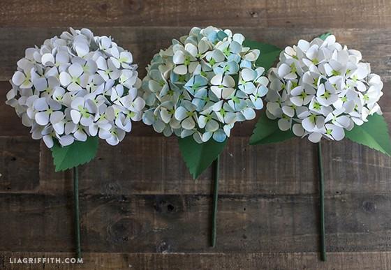 Hydrengea_Blooms_DIY