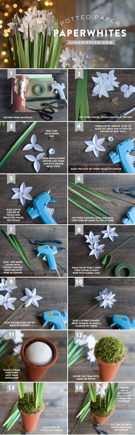Paper_Paperwhites_Tutorial