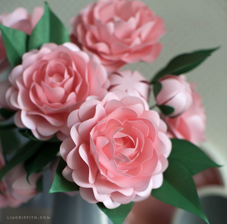 paper camellia - PP camellia 5 - Paper Camellia