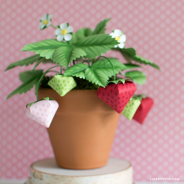 paper strawberry plant - Paper Strawberry Plant 1 - Paper Strawberry Plant