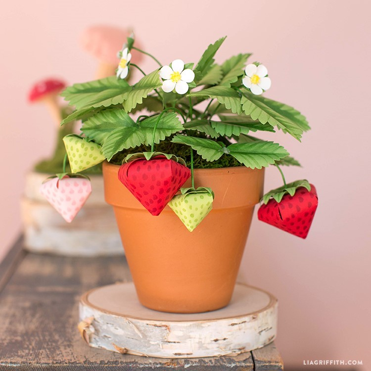 paper strawberry plant