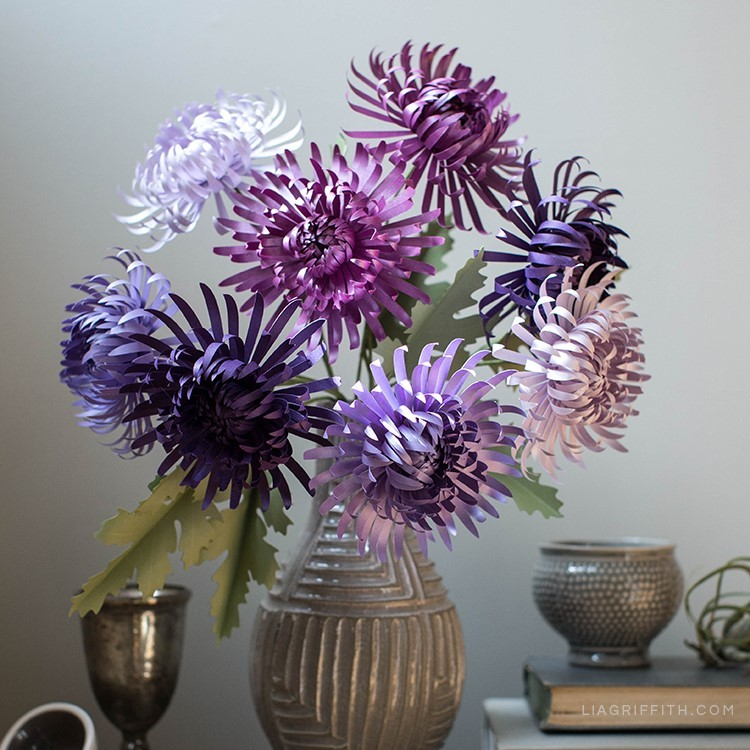 Purple paper spider chrysanthemums in vase