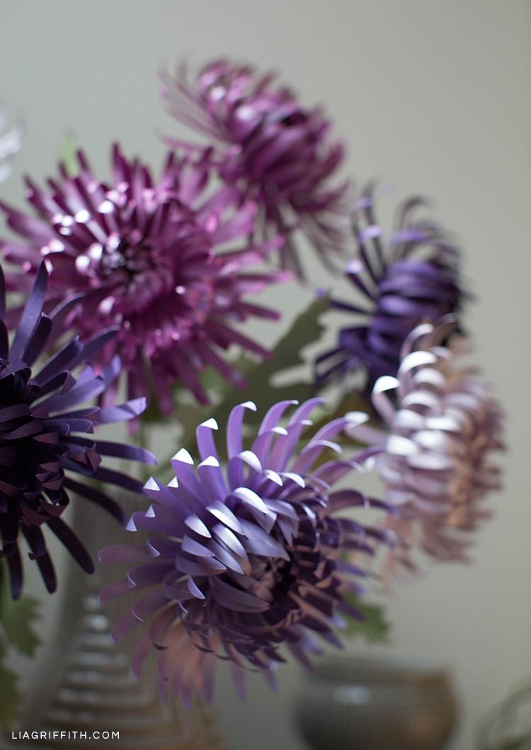 Purple paper spider chrysanthemums