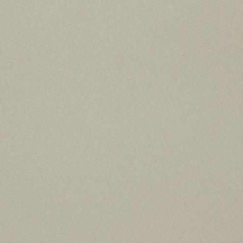 PaperPapersCuriousEucalyptus