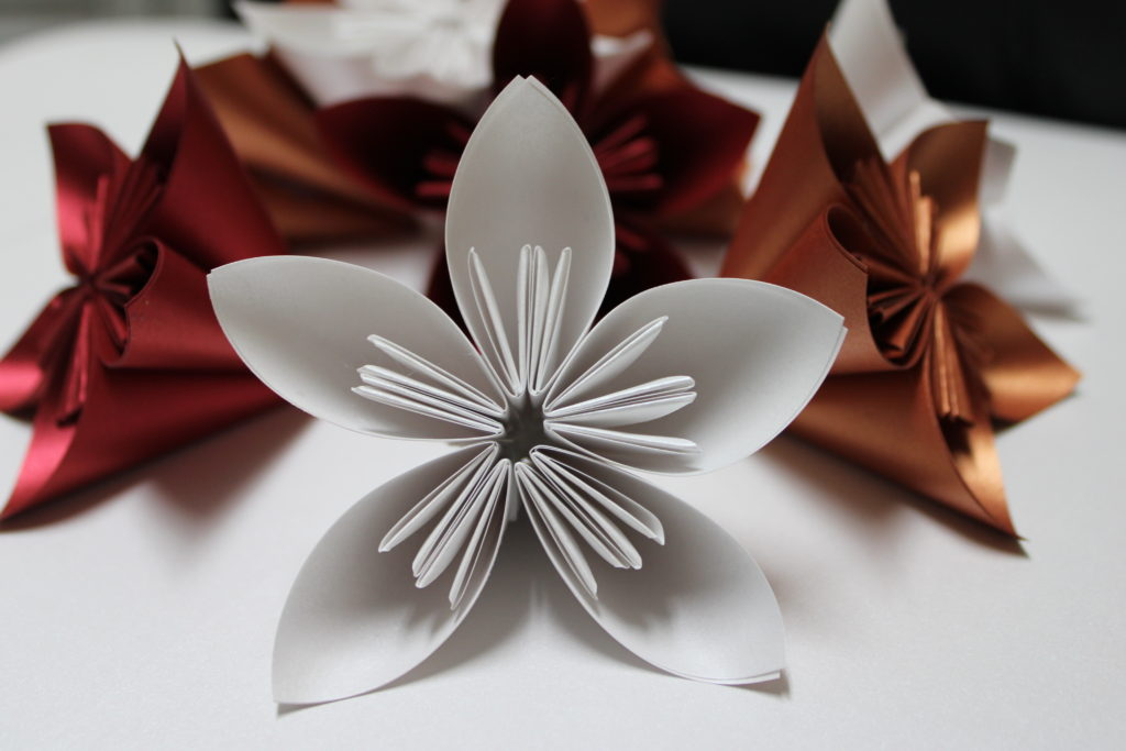 PaperPapersPaperPoinsettaFlower01