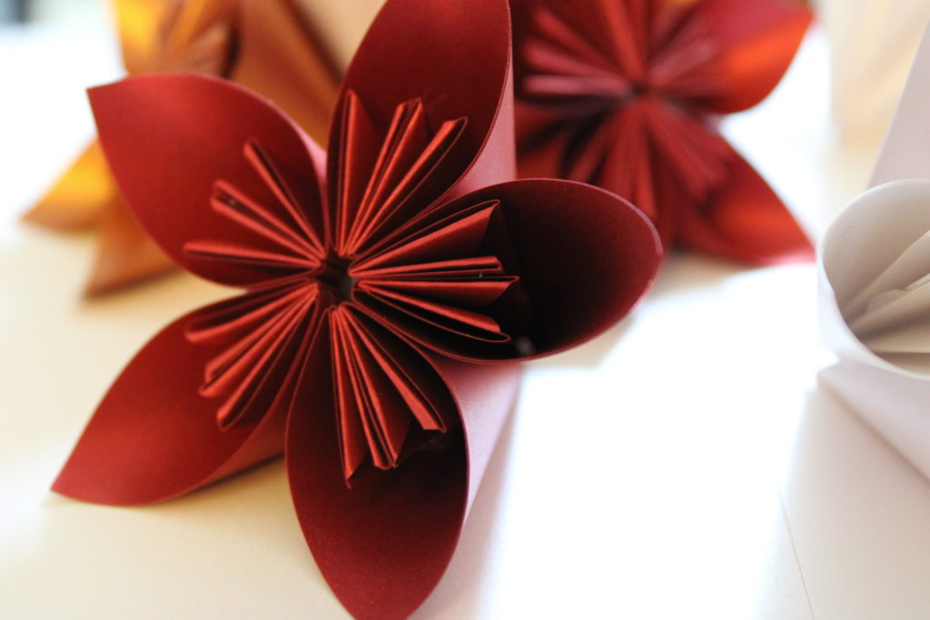 PaperPapersPaperPoinsettaFlower03