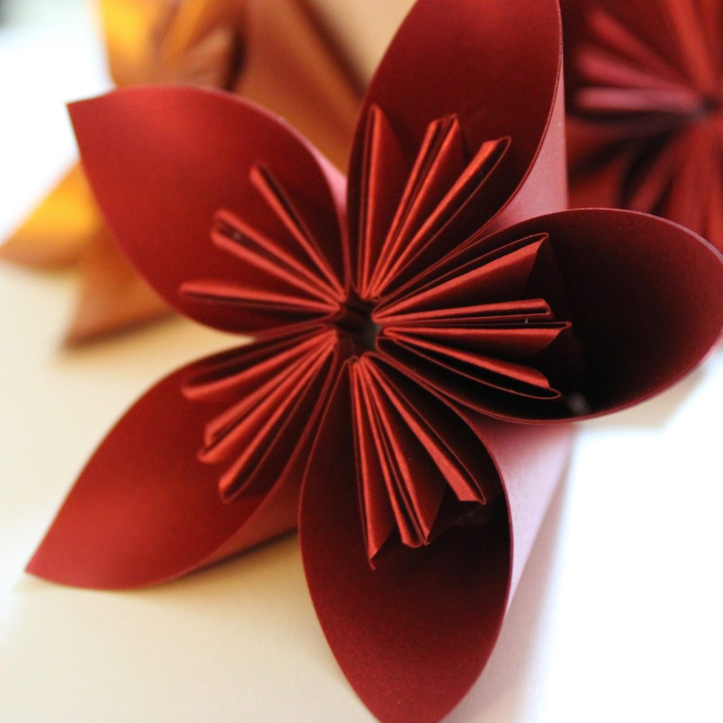 PaperPapersPaperPoinsettaFlower04
