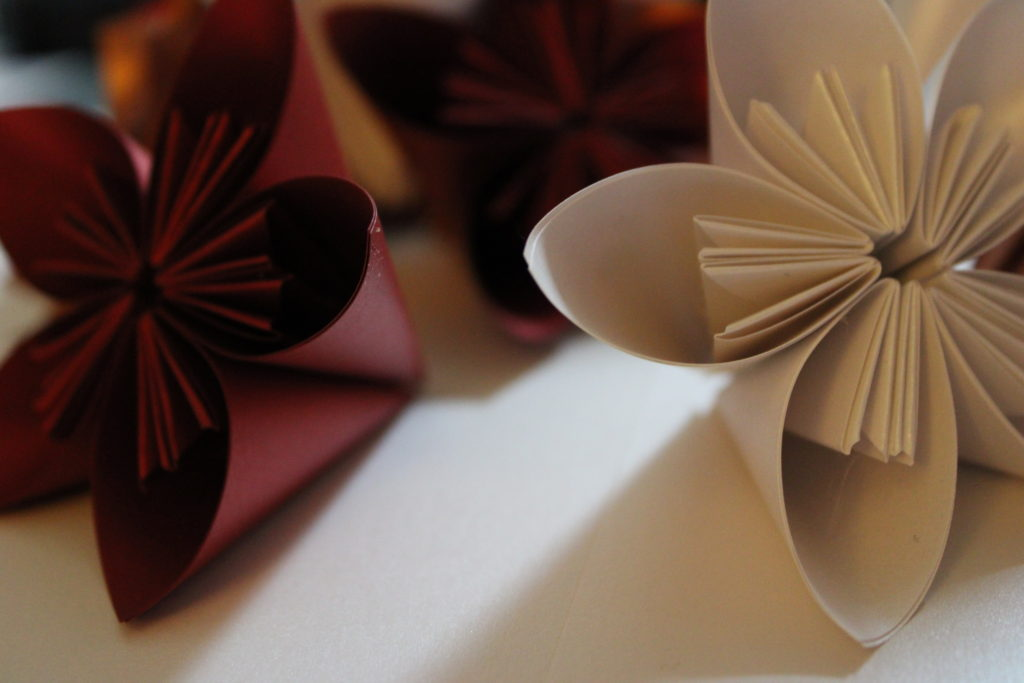 PaperPapersPaperPoinsettaFlower05