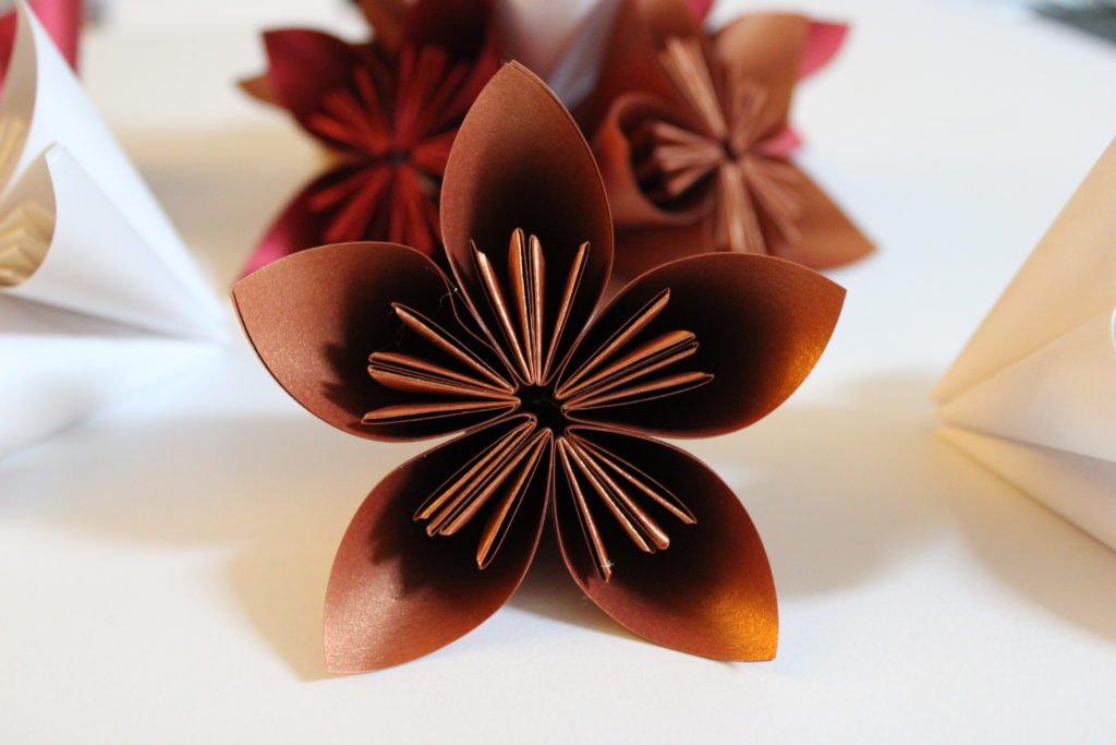 PaperPapersPaperPoinsettaFlower06