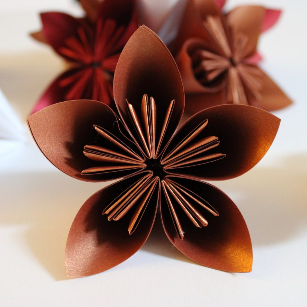 PaperPapersPaperPoinsettaFlower07