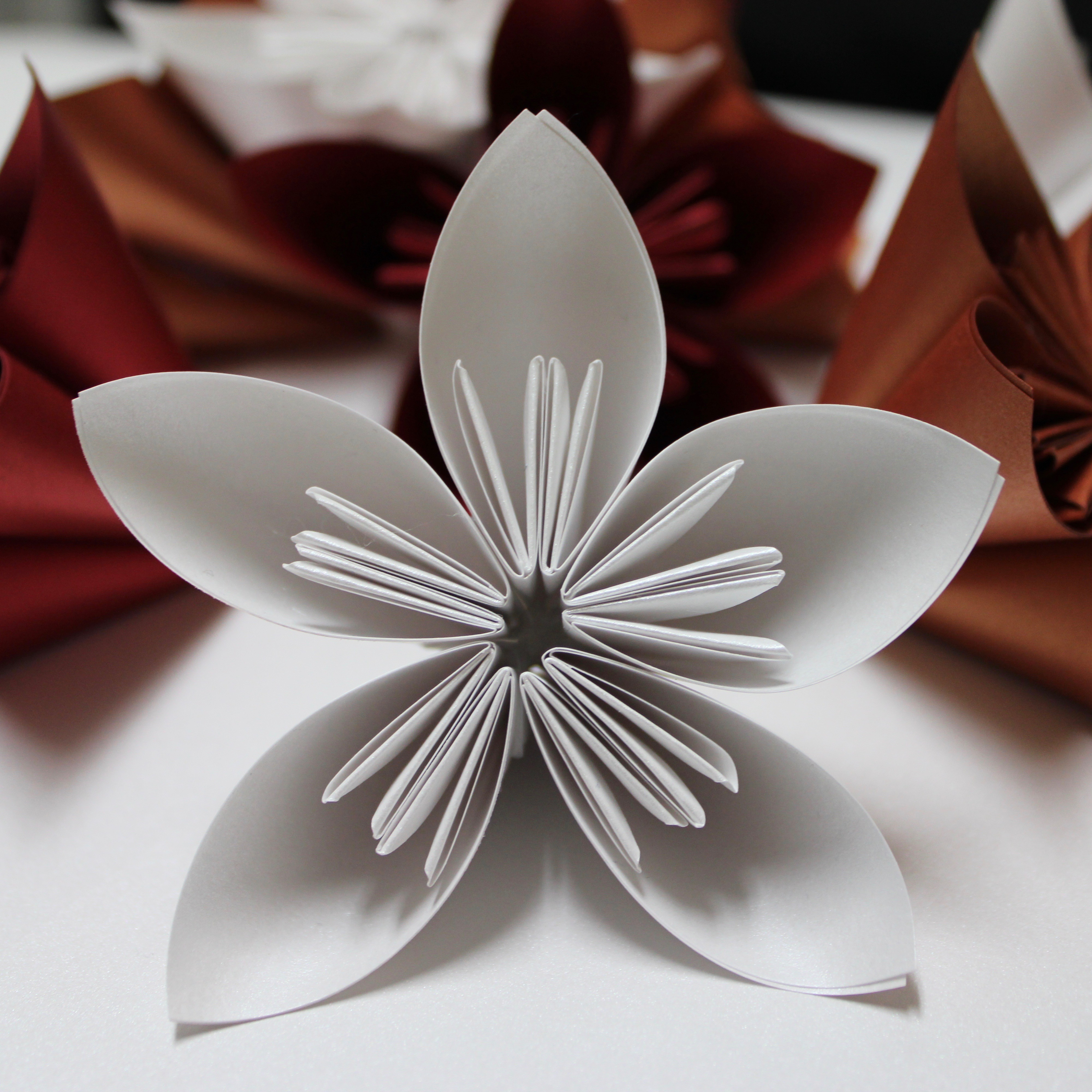 PaperPapersPaperPoinsettaFlower08