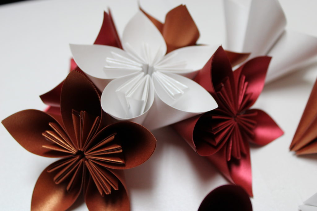 PaperPapersPaperPoinsettaFlower09