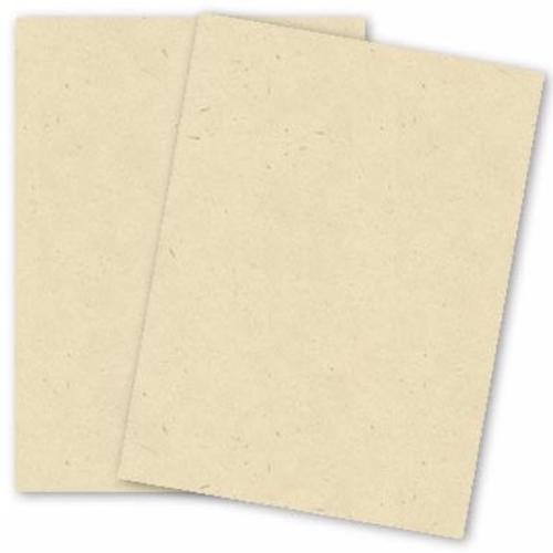PaperPapersSpeckletoneCream