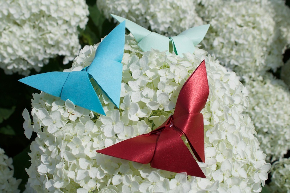 20+ Cute and Easy Origami for Kids - Easy Peasy and Fun | 667x1000
